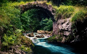 Picture forest, nature, river, stream, stream, the bridge
