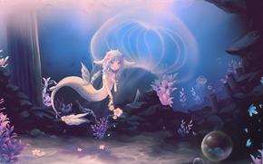 Picture flowers, bubbles, Medusa, Mermaid, underwater world, ears