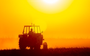 Picture field, tractor, worker