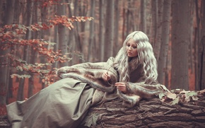 Picture autumn, forest, girl, fur, Sloth