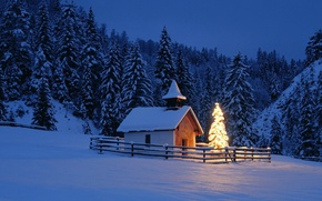 Picture winter, forest, night, Nature, Landscape, chapel, Christmas tree