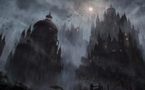 Picture birds, night, castle, rain, the moon, art
