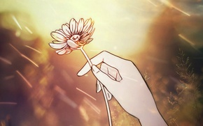 Picture flower, hand, retouch