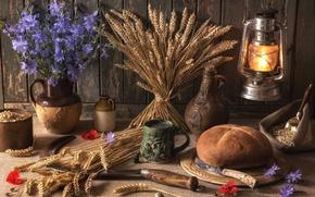Picture wheat, grain, bread, knife, mug, lantern, pitcher, still life, hammer, chicory