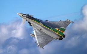 Picture fighter, flight, multipurpose, Eurofighter Typhoon