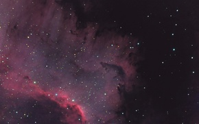 Picture nebula, Swan, North America, in the constellation, emission, NGC 7000