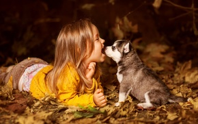 Picture child, dog, girl, puppy, friends, husky