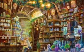Wallpaper room, books, girl, bottle, library, laboratory, equipment