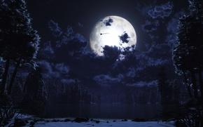 Wallpaper the moon, Santa, night