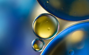 Wallpaper water, macro, bubbles, oil, oil circles