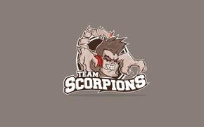 Picture design, the game, minimalism, logo, team, logo, bright, brown, team, dota2, scorpions, Art Shift