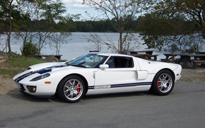 Picture Ford, Blue, White, lake, Stripes, gt