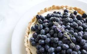Picture flowers, food, blueberries, berry, plate, sugar, lavender, tartlet