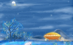 Picture winter, UFO, Kitty