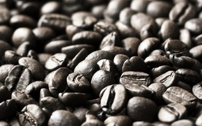 Wallpaper widescreen, HD wallpapers, Wallpaper, coffee beans, full screen, background, fullscreen, macro, widescreen, mood, background, widescreen, ...