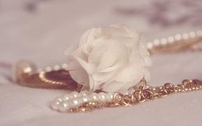 Picture macro, pearl, decoration, chain
