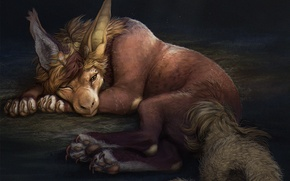 Picture animal, mane, lies, sleep, luxurious tail, A mythical creature