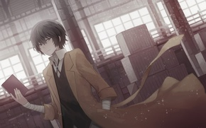 Picture anime, art, class, guy, Bungou Stray Dogs