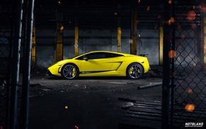 Picture Lamborghini, Superleggera, Gallardo, Yellow