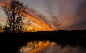 Picture the sky, clouds, lake, tree, dawn, Silhouette, shadows, dawn