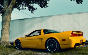 Picture Grass, Tree, Yellow, Back, Acura, NSX