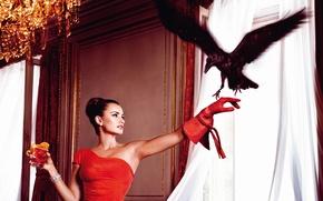 Picture girl, background, actress, beauty, Raven, Penelope Cruz, Penelope Cruz
