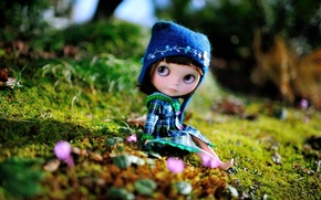 Picture doll, sitting, cap, toy, hat