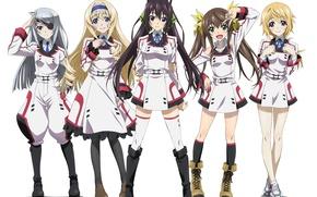 Picture girls, anime, art, Infinite Stratos, Houki Shinonono, Lingyin Huang, Charlotte Dunois, Cecilia Alcott, Laura Bodewig