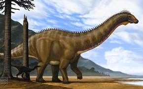 Picture Animals, Ancient, Dinosaurs, Apatosaurus