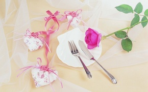 Wallpaper flowers, heart, holiday, mesh, tape, heart, plug, background, Wallpaper, flower, plate, rose, pink, knife
