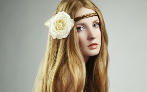 Picture look, pigtail, white rose, girl, long hair, face, flower