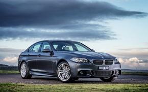 Picture BMW, BMW, F10, Sedan, 2015, useless