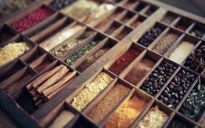 Picture cinnamon, a lot, spices, grains