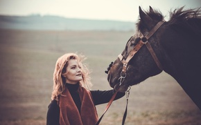 Picture field, the sky, horse, Girl