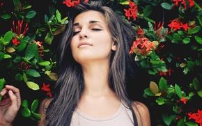 Picture girl, flowers, brunette