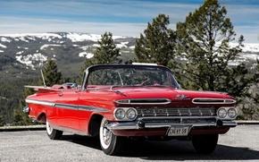 Picture Chevrolet, convertible, Chevrolet, Impala, 1959, Impala