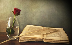 Picture table, pen, rose, book, vase, red, old