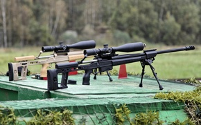 Picture rifle, sniper, Orsis T-5000, ORSIS T-5000, sniper rifles, Russian