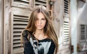 Picture look, girl, face, sweetheart, hair