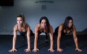 Wallpaper women's group, push-ups, fitness, Class