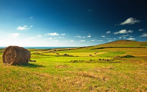 Wallpaper field, the sky, clouds, landscape, stack, horizon, meadow, hay, green, blue, Green, field, landscape, village, ...