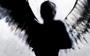 Picture squirt, black, wings, silhouette