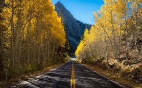 Picture road, autumn, mountains