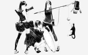 Picture cat, girls, art, photoshoot, Sawasawa