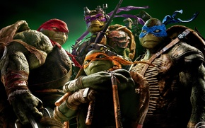 Picture Rafael, Raphael, Leonardo, Donatello, Donatello, Leonardo, Michelangelo, Teenage Mutant Ninja Turtles, Michelangelo, Teenage Mutant Ninja …