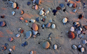 Picture sand, beach, different, stones