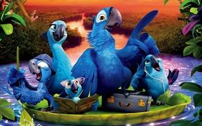 Picture family, Blue Sky, Cartoon, Comedy, Rio 2, Adventure