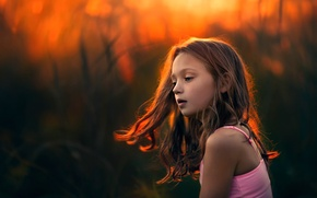Picture light, sunset, hair, girl, An Evening Of Amber