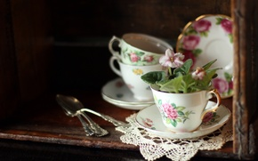Picture flowers, Cup, dishes, napkin, saucers, violet, spoon, buffet