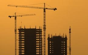 Wallpaper crane, house, night